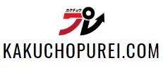 kakuchopurei.com Logo