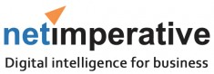 netimperative.com Logo