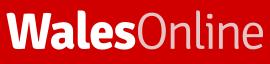 walesonline.co.uk Logo