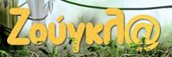 zougla.gr Logo